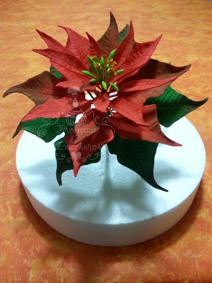 Stella Di Natale Pasta Di Zucchero Tutorial.Tutorial Come Realizzare Una Stella Di Natale In Gum Paste